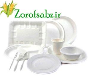 ظروف یک بار مصرف گیاهی سبز
