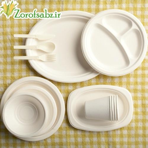 ظرف یک بار مصرف گیاهی ظروف سبز