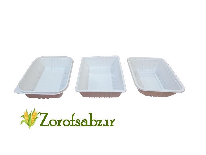 ظروف سبز ظروف یکبار مصرف گیاهی