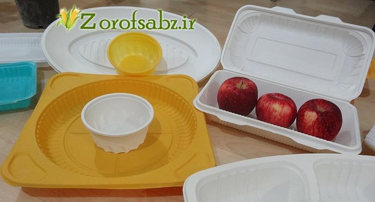 ظرف غذا در دار سیب قرمز ظرف غذای یکبار مصرف 2 خانه